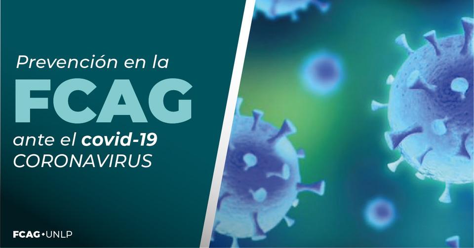 La imagen ilustra sobre la forma del coronavirus.
