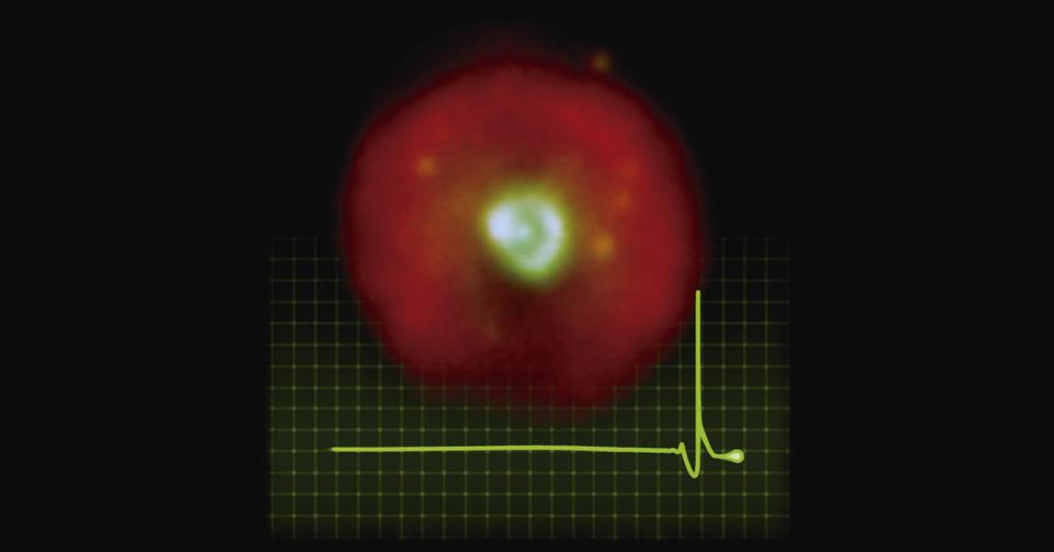La imagen muestra la foto de esta nebulosa, superpuesta con una curva que representa el shock de energía generado por la fusíon repentina del helio y que hace renacer a la estrella central.(Imagen compuesta creada por Martín Guerrero, Gerardo Ramos-Larios y Miller Bertolami).